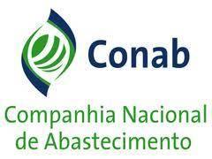 Apostila CONAB - TECNOLOGIA da INFORMAÇÃO - DESENVOLVIMENTO.