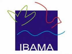 Apostila IBAMA 2014 - Gerente de Projetos de TI